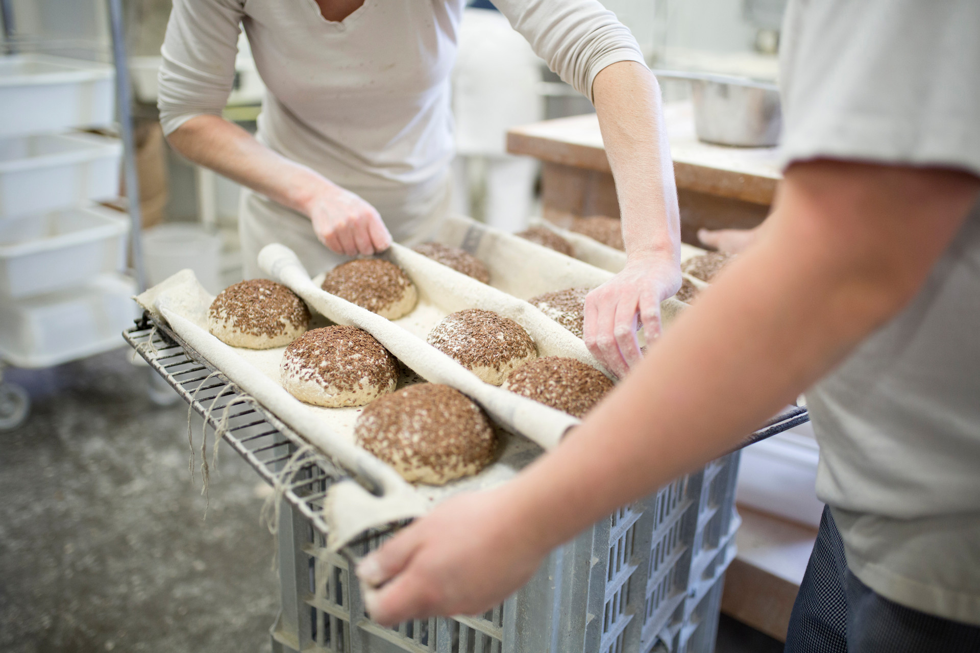 Research Artisan Bread