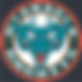 OK Rockets Logo.png