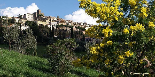 WPA Tuscany 1.jpg