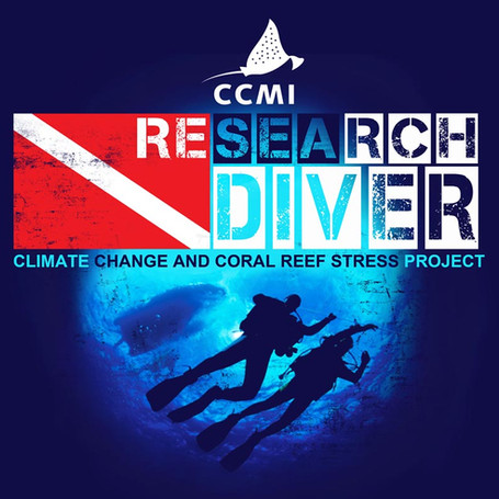 Research Diver.jpg