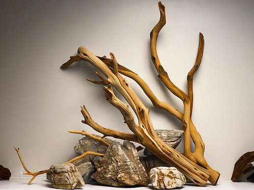 Manzanita Drift Wood