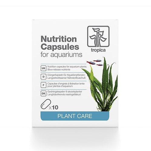 Nutrition Capsules X10