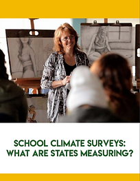 2020 SCHOOL CLIMATE SURVEYS