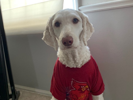 Little Iowa State Cyclone support from Lexi!!