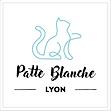 Patte Blanche Association Lyon, patteblanche, adopter chaton, chat