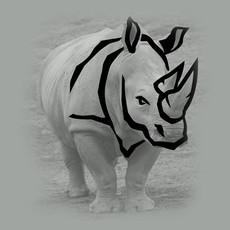Rhino-graphic-origin.jpg