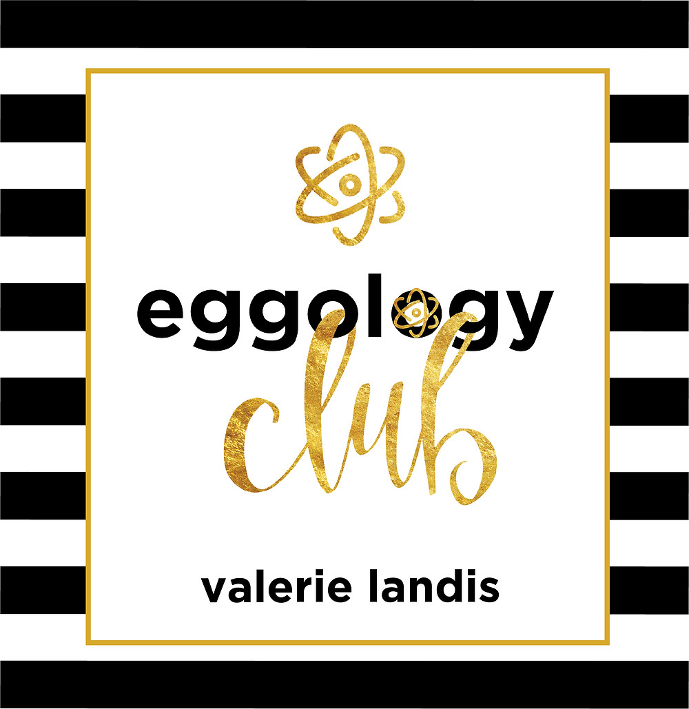 Artwork for the eggology club podcast