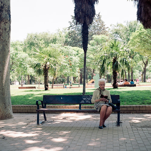 Madrid, Jardines del Templo de Debod