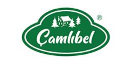 CAMLIBEL
