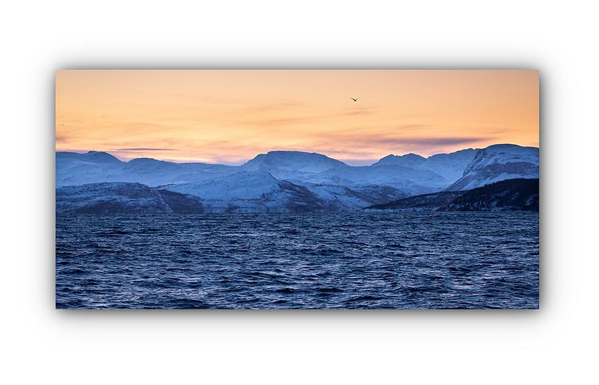 Skjervøya 4 IR Varmepanel Veggbilde Paneloven