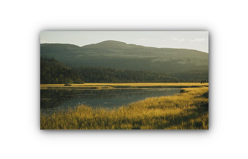 Savalen sommer IR Varmepanel Veggbilde Panelovn