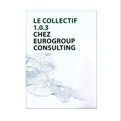 Eurogroup Consulting/Collectif 1.0.3