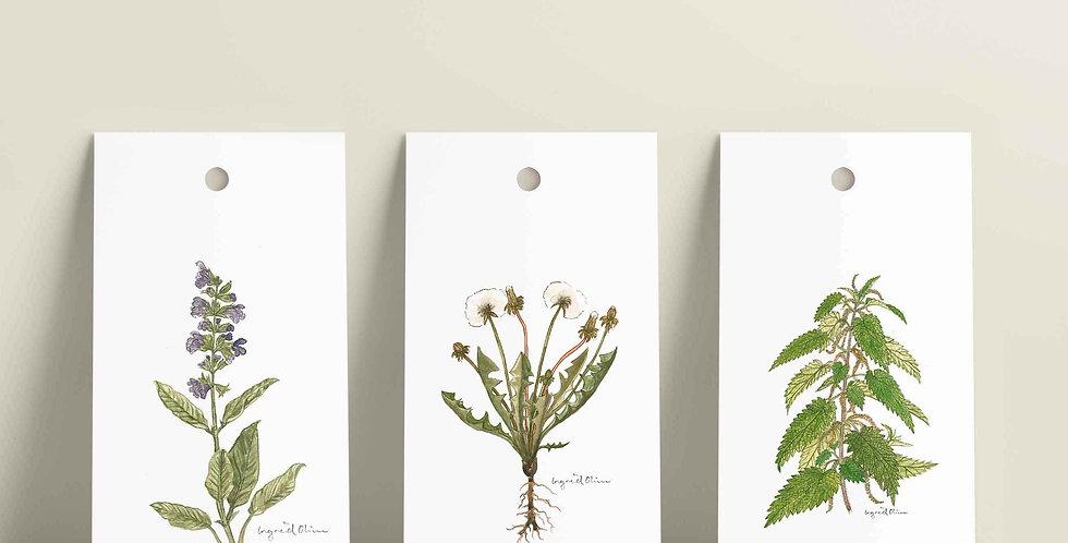 Gavelapper: Velg selv motiv fra  botanisk serien