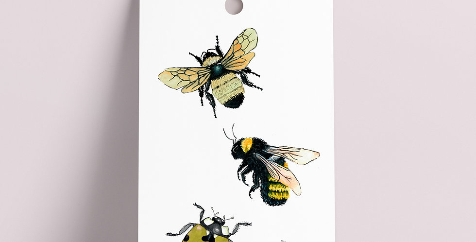 Gavelapp: Insekter