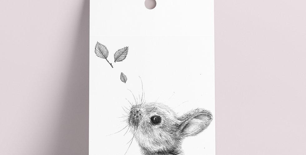 Gavelapp: Grå Kanin