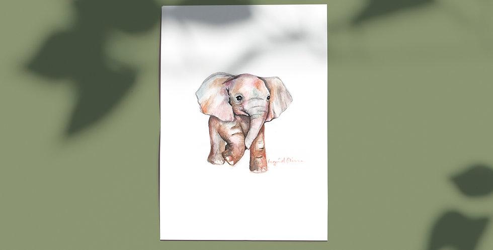 Plakat: Elefant