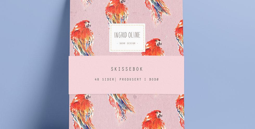 Skissebok: Papegøye