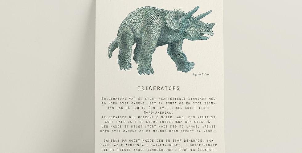 Kort: Triceratops
