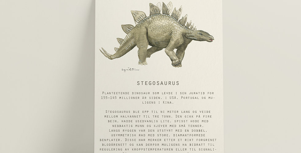 Kort: Stegosaurus