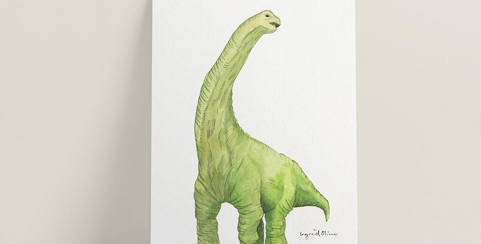 Kort: Brontosaurus
