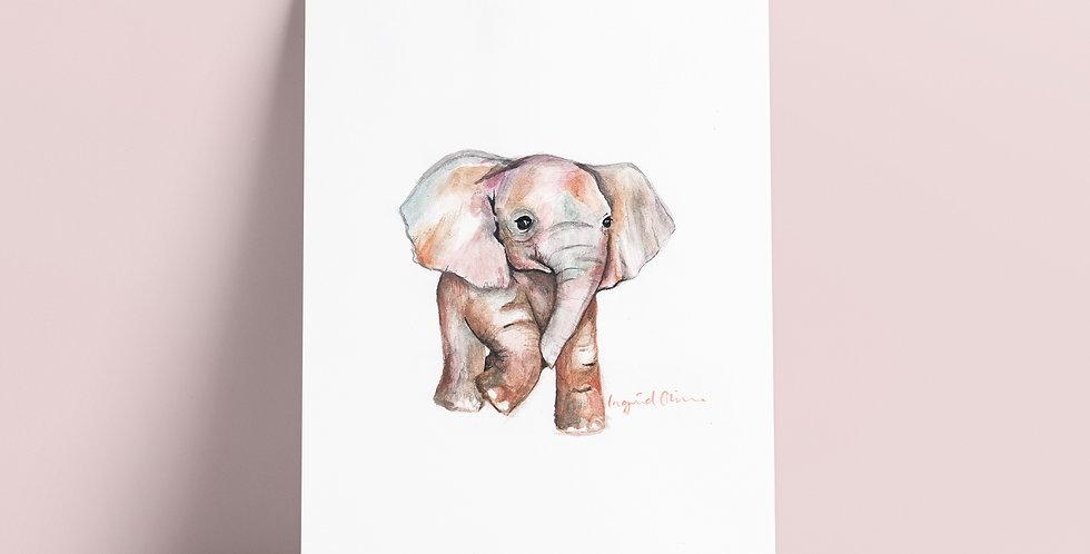 Kort: Elefant