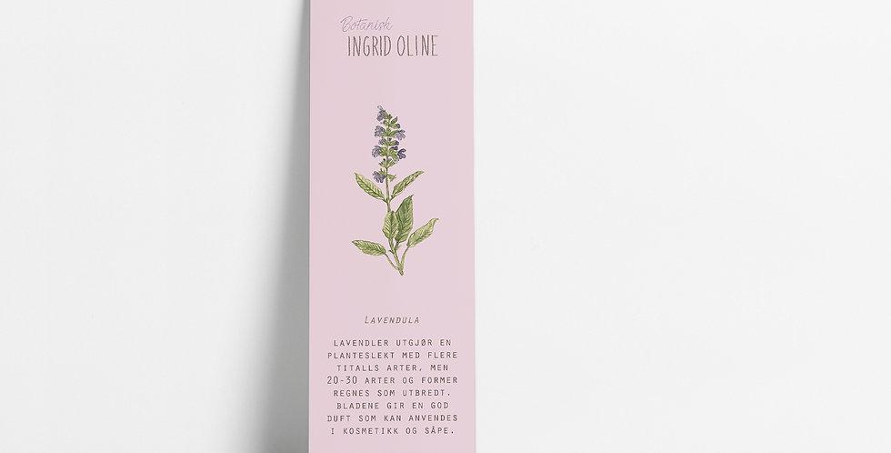 Bokmerke: Botanisk Lavendel
