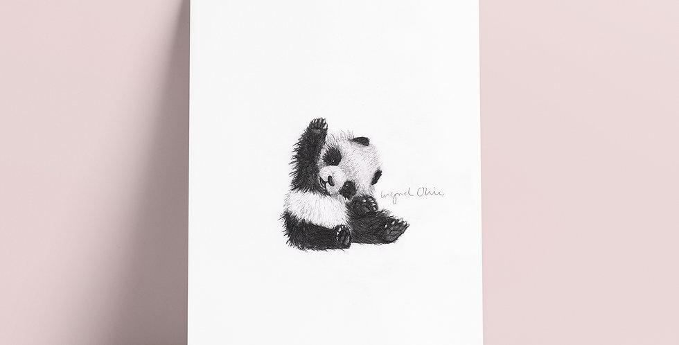 Kort: Panda