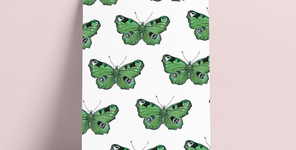 Kort: Grønne Sommerfugler