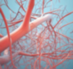 Chiurgia vascolare