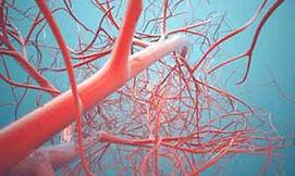 chirurgia-vascolare.jpg