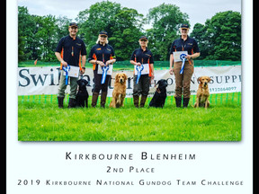 Kirkbourne National Gundog Team Challange