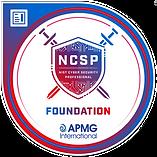 NCSP Foundation Logo.png