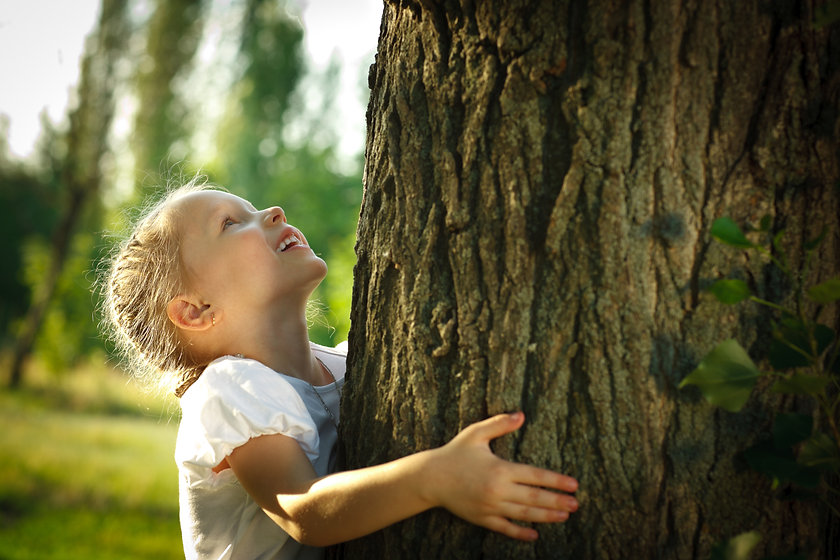 Little girl hugging a tree, looking up.j
