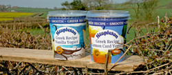 Stapleton Yogurts