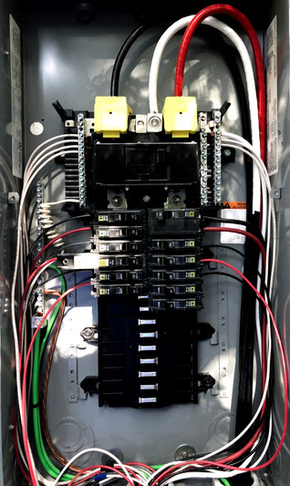 1-Panel A.jpg