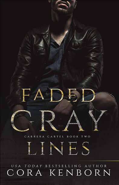 Faded Gray Lines Cover.jpg