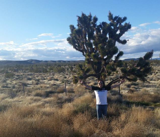 Deserto de Nevada - EUA