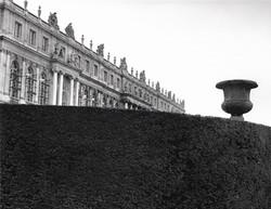versailles,hedge&urn