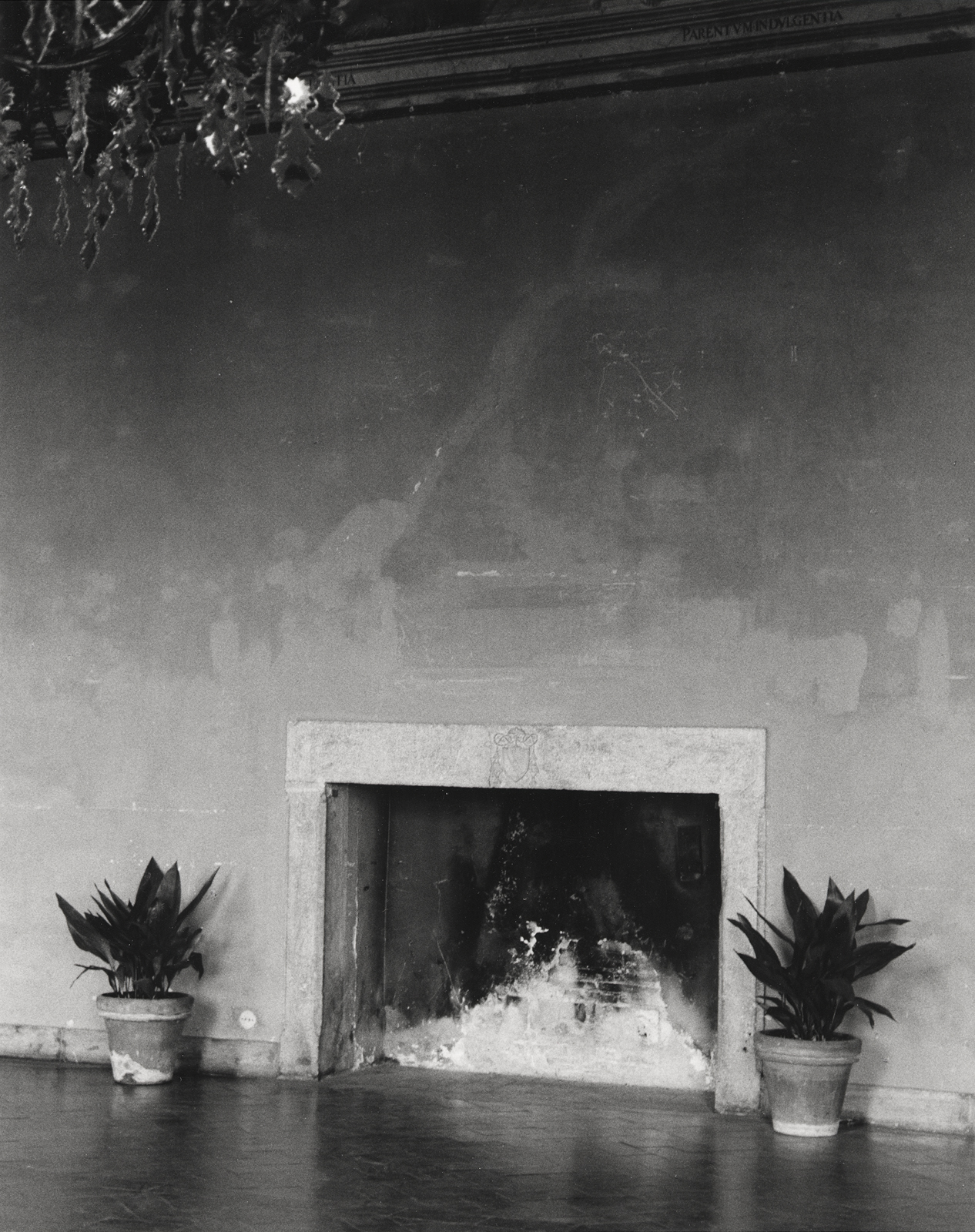 tivoli,fireplace and plants