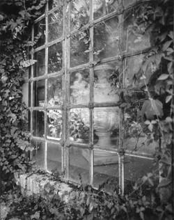 villa farnesina,window