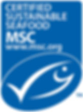 MSC_LOGO_Portrait_HighRes.jpg