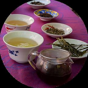 dégustation de thés dans une ambiance sereine