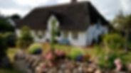 home-1600x900-053.jpg
