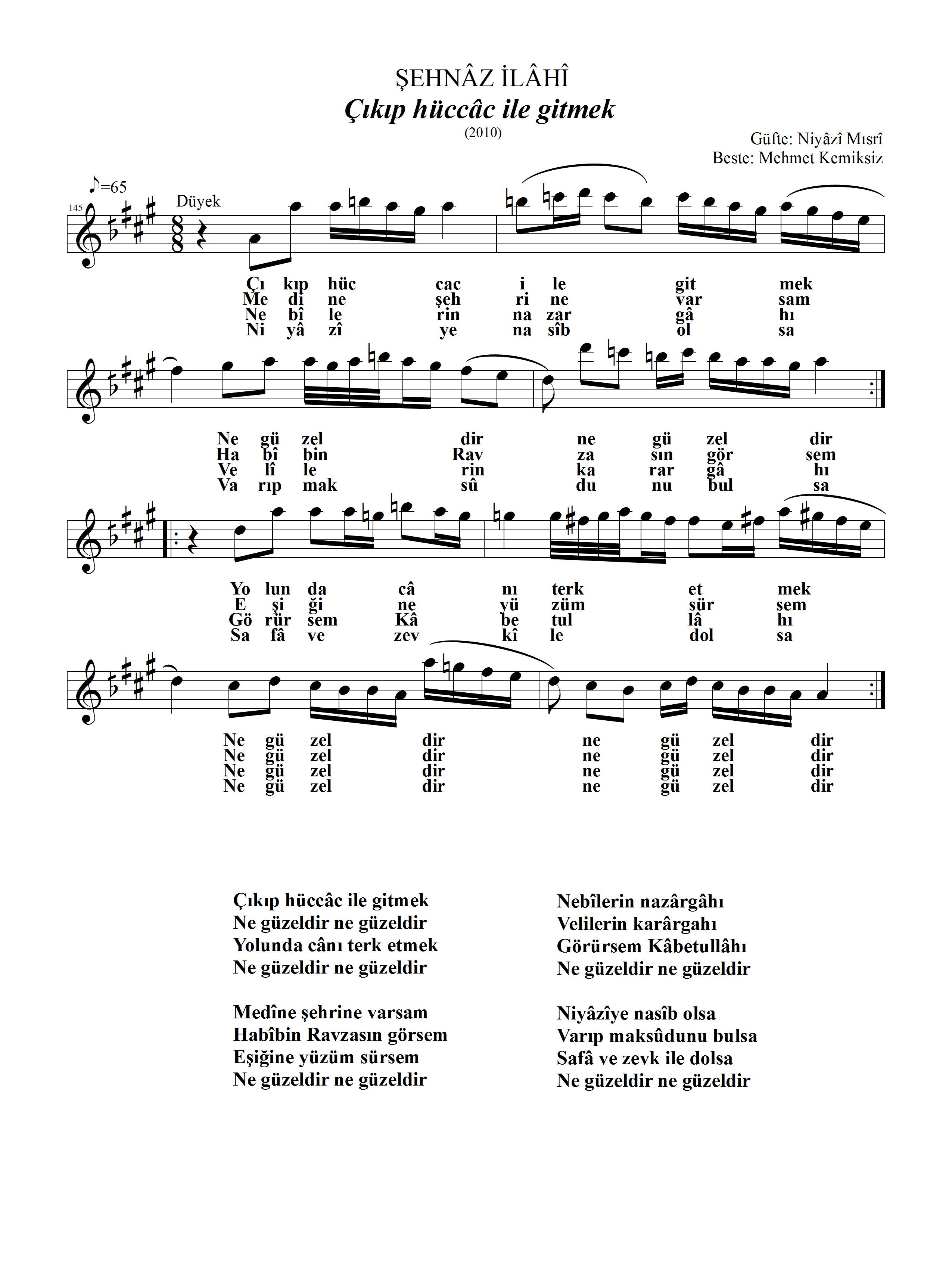 145-Sehnaz-CikipHuccac