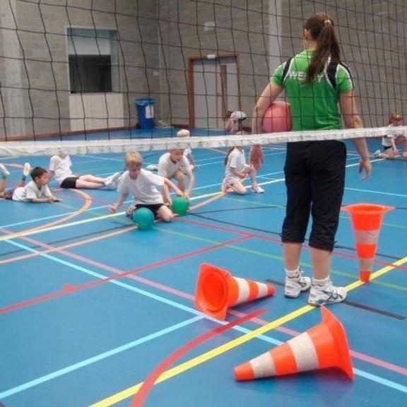 Start to Volleyplus Ardooie