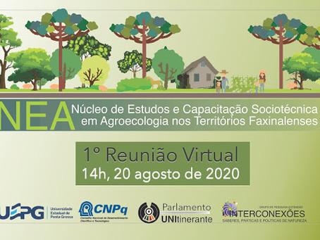 1ª Reunião Virtual do NEA Territórios Faxinalenses