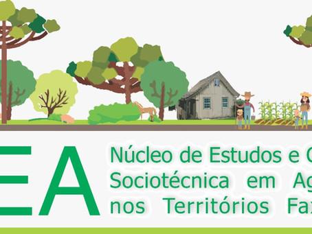 NEA - Núcleo de Estudos e Capacitação Sociotécnica em Agroecologia nos Territórios Faxinalenses