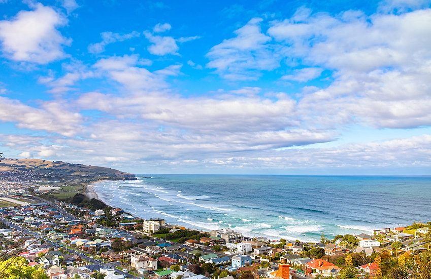 St Clair | Dunedin | New Zealand | coastline surf photo by ©Starfish Photos | Michele Newman Photographer