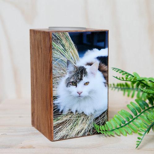 Custom Pet Candle