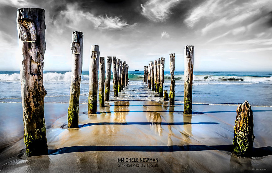 St Clair beach poles art photography Dunedin New Zealand ©Starfish Photos | Michele Newman Photographer